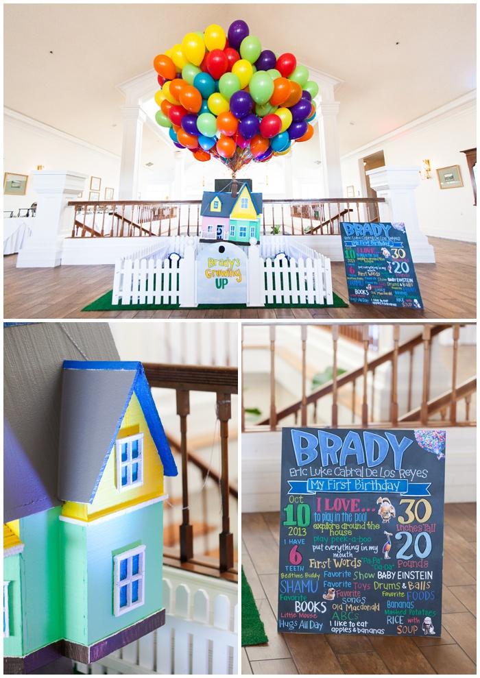 Brady's 1st Birthday | Disney's UP theme – NEMA PHOTOGRAPHY